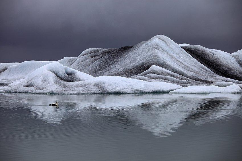 Jökulsárlón, Islandia - Momentos de Islandia - Isabel Díez . Islandia