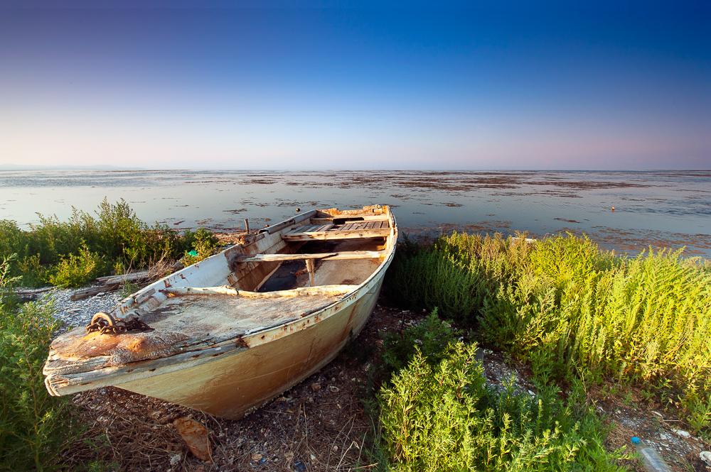 Lo Delta - Jaume Jové, Fotografía de Autor