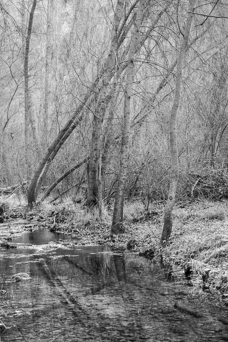 Río Dulce - en blanco y negro - JESUS RODRIGUEZ, photography