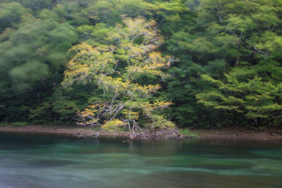 Oirase - Tōhoku - JESUS RODRIGUEZ, photography