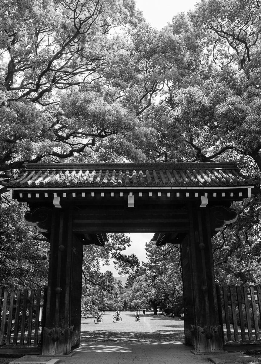 Palacio Imperial. Kioto - Escenas - JESUS RODRIGUEZ, FOTOGRAFIA DE NATURALEZA