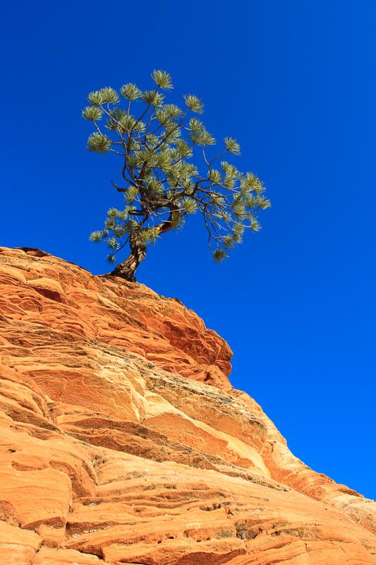 de arena y roca - JESUS RODRIGUEZ, FOTOGRAFIA DE NATURALEZA