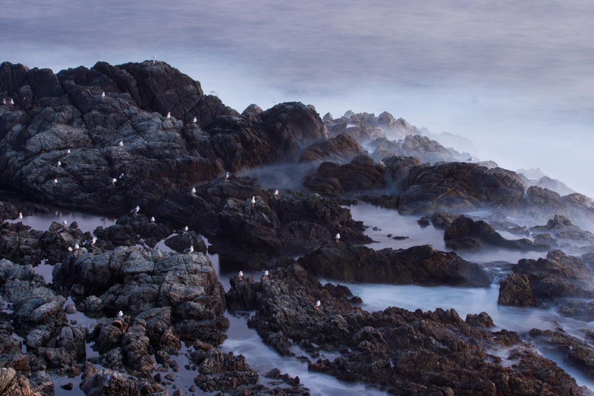 Big Sur, California - una costa - JESUS RODRIGUEZ, FOTOGRAFIA DE NATURALEZA