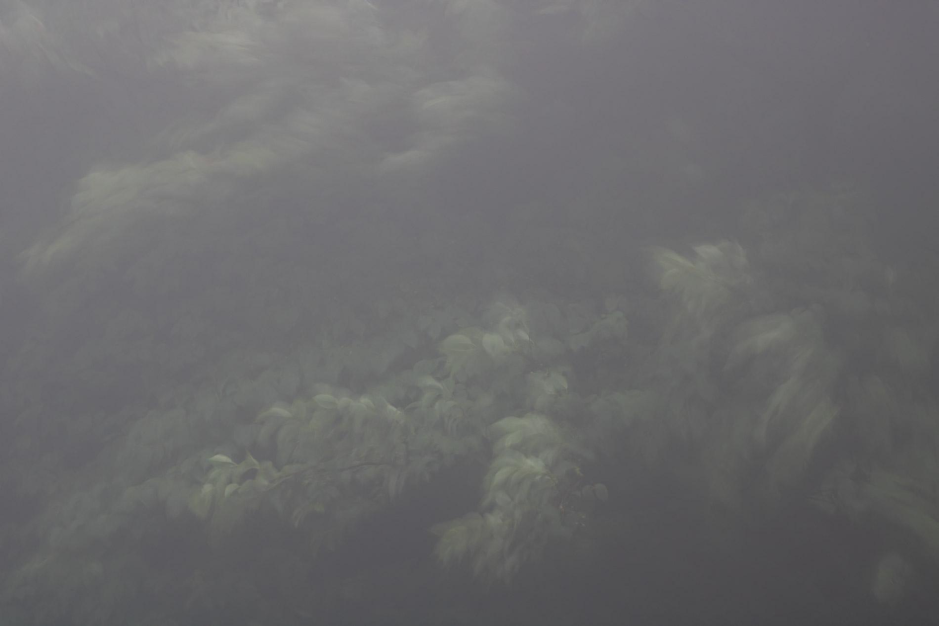 Unzen - Kyushu - JESUS RODRIGUEZ, FOTOGRAFIA DE NATURALEZA