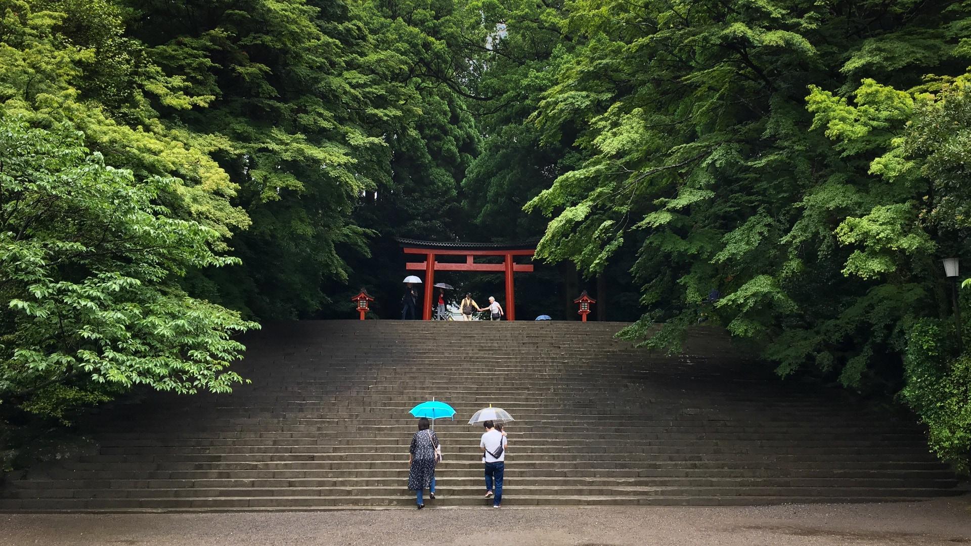 Kirishima - Kyushu - JESUS RODRIGUEZ, FOTOGRAFIA DE NATURALEZA