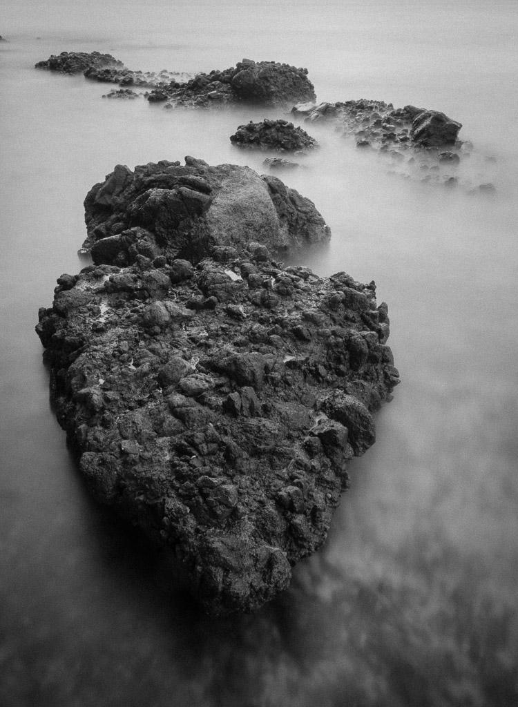 Dragon - en blanco y negro - JESUS RODRIGUEZ, FOTOGRAFIA DE NATURALEZA