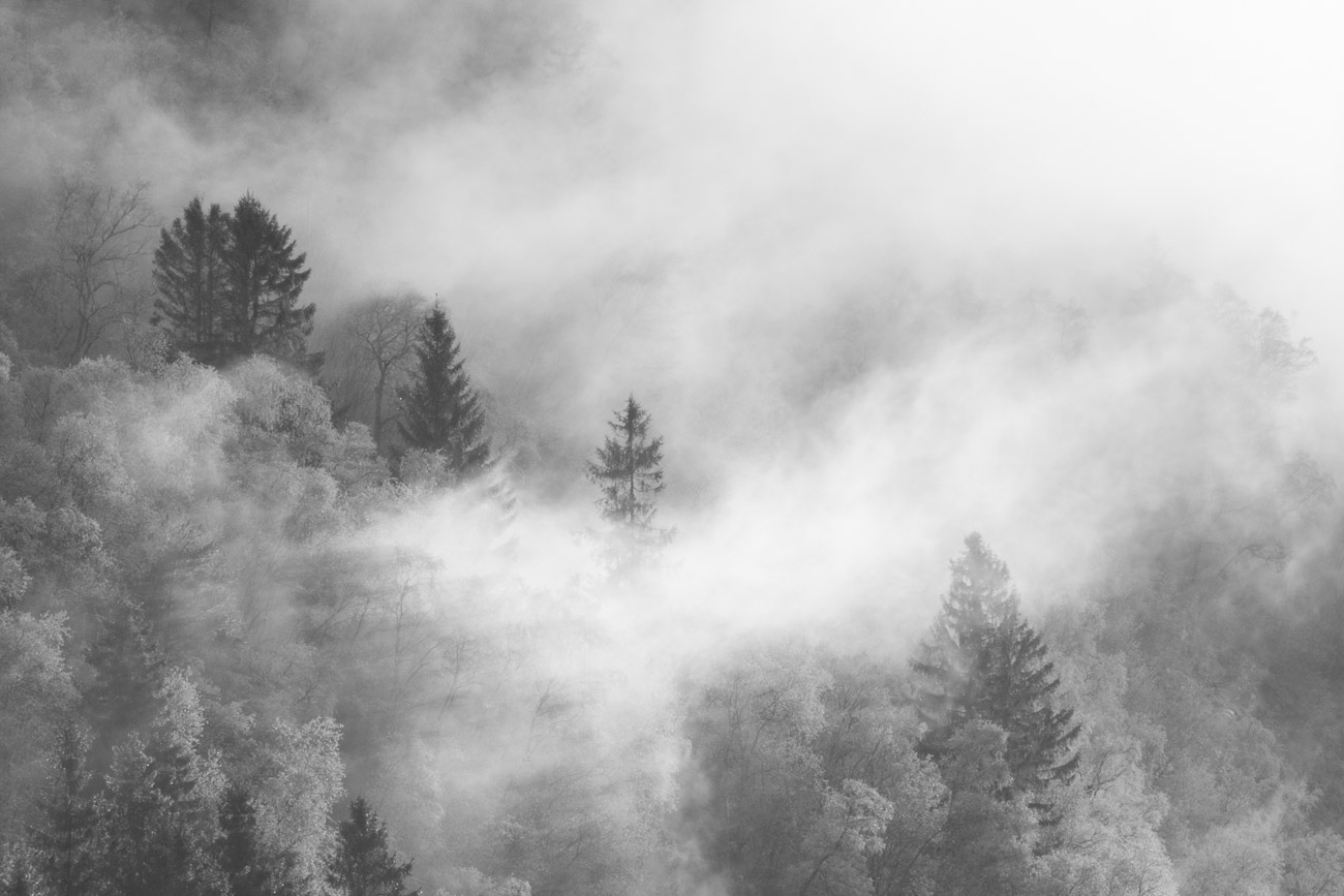 Balestrand - Noruega - JESUS RODRIGUEZ, FOTOGRAFIA DE NATURALEZA