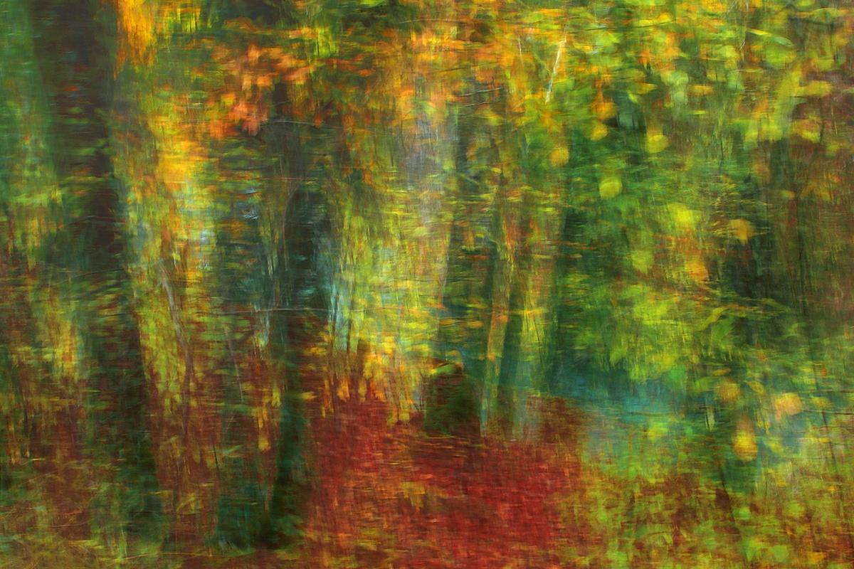 EL TRAZO IMPRESIONISTA -        Juan Tapia      , Art & Nature