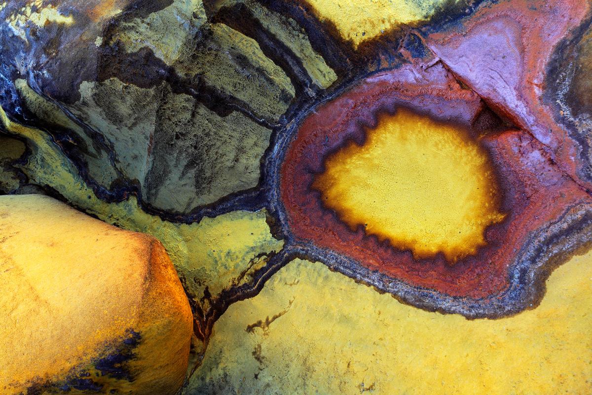 LA ESCUELA DEL ARTE -        Juan Tapia      , Art & Nature