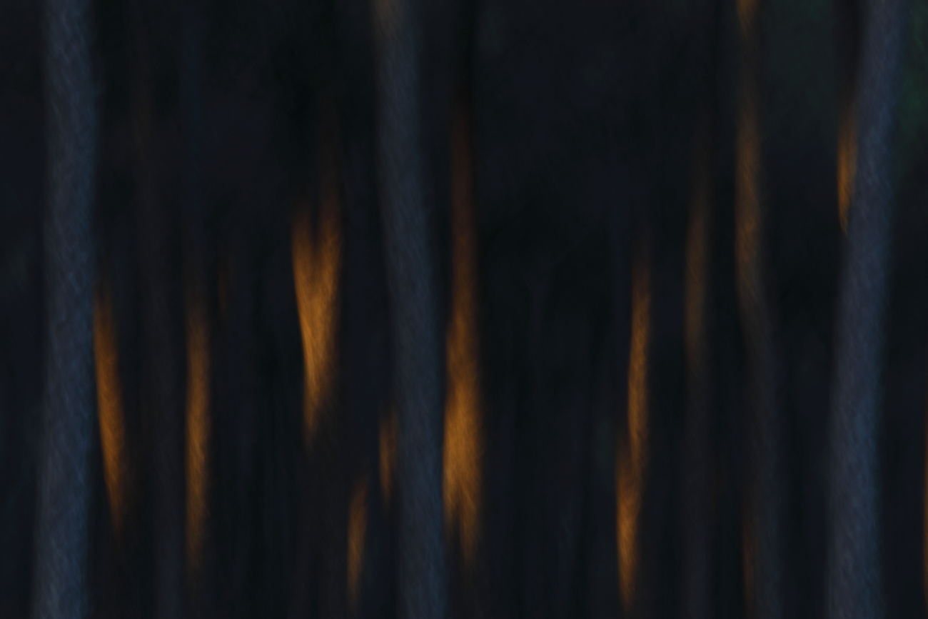 Finalista Asferico Internacional Nature Photography Competition 2017 - Finalist Asferico Internacional Nature Photography Competition 2017 - José Luis Sánchez Almécija. Imágenes de Naturaleza