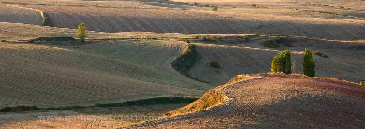 Berceo (La Rioja) - Panorámicas - J L Gómez de Francisco. Fotografía panorámica de paisaje - Panoramic pictures