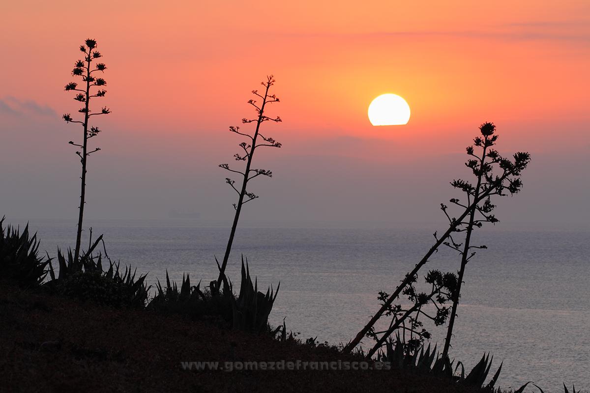 Amanecer en el Parque Natural del Estrecho (Cádiz) - España - J L Gómez de Francisco. Fotografía de paisaje de España - Spanish landscape