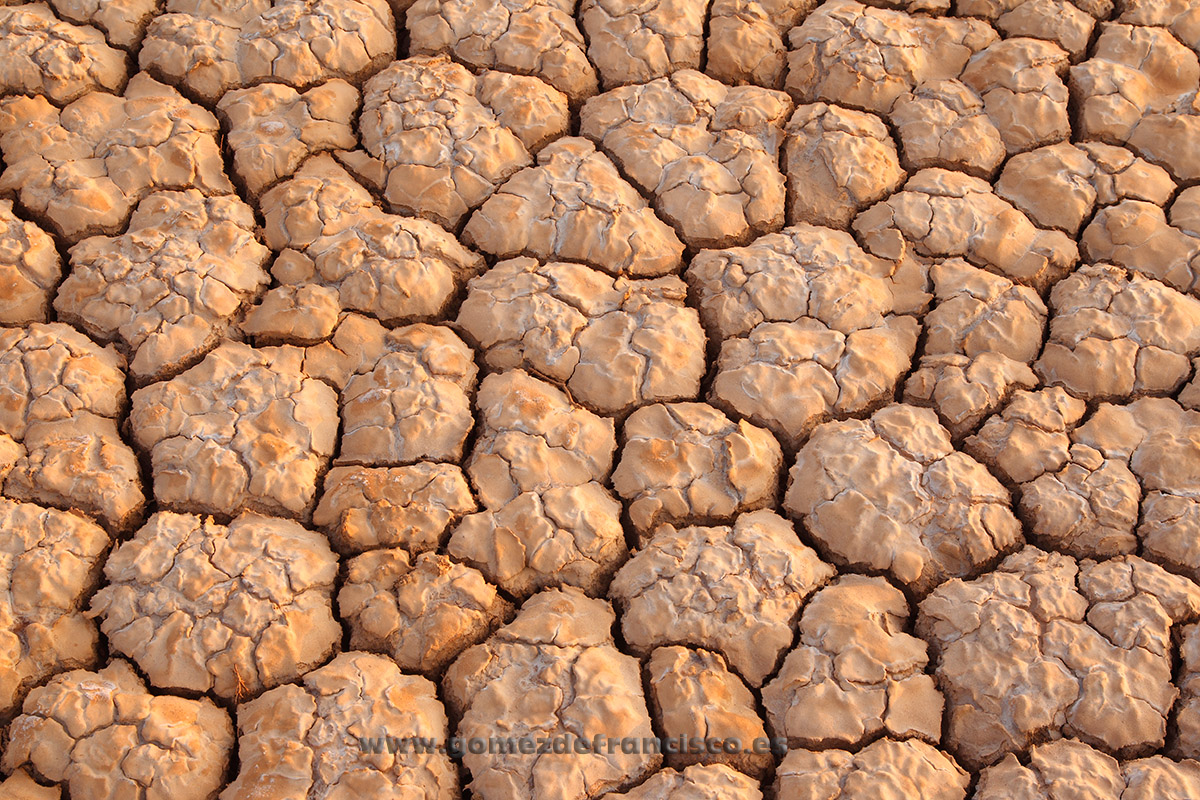 Sequía. La Rioja - Atención al detalle - J L Gómez de Francisco. Fotografía de detalles de la naturaleza - Photography of patterns in nature