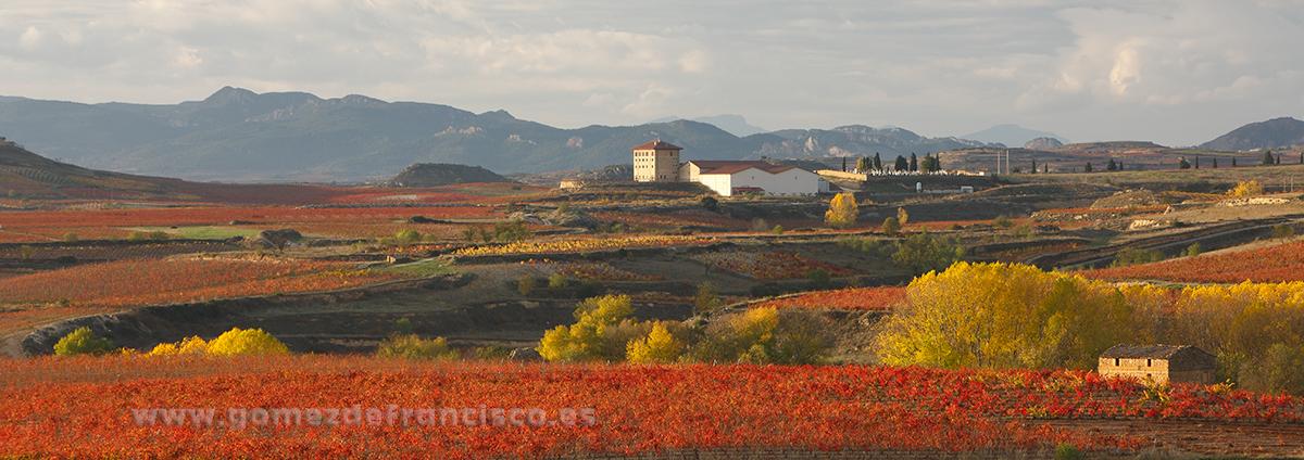 San Vicente de la Sonsierra (La Rioja) - Panorámicas - J L Gómez de Francisco. Fotografía panorámica de paisaje - Panoramic pictures