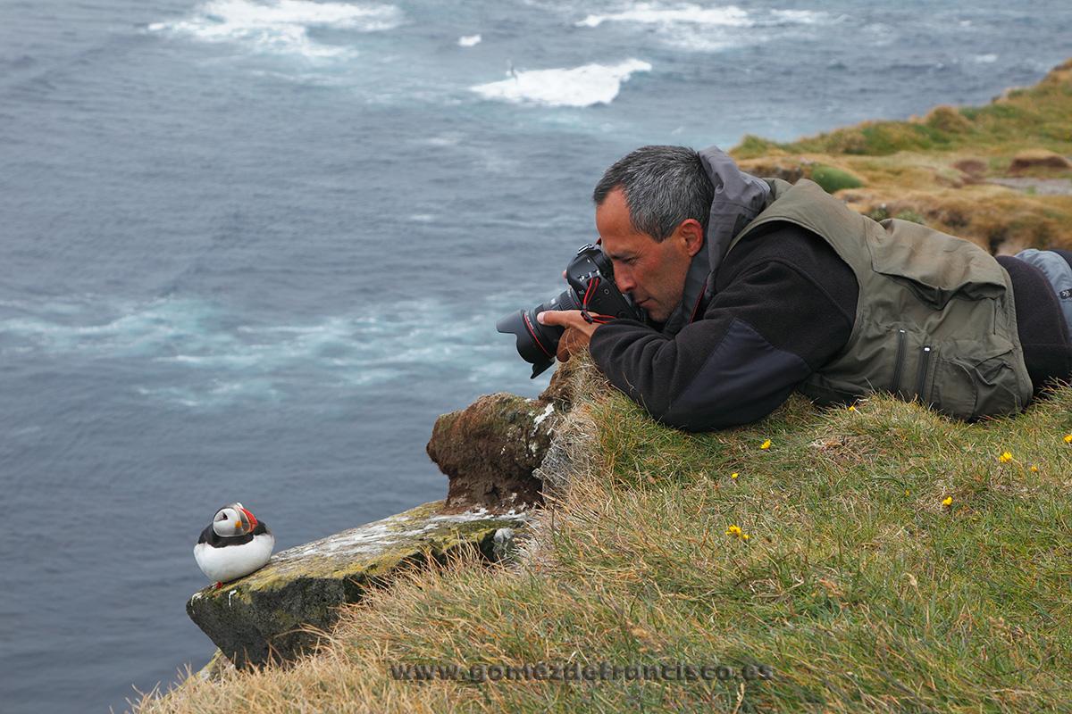 Fotografiando frailecillo común (Fratercula arctica). Islandia - Making of - J L Gómez de Francisco. Fotografía de making of - Making of