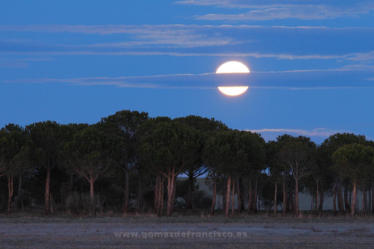 Luna llena en la Reserva Natural de las Lagunas de Villafáfila (Zamora) - España - J L Gómez de Francisco. Fotografía de paisaje de España - Spanish landscape