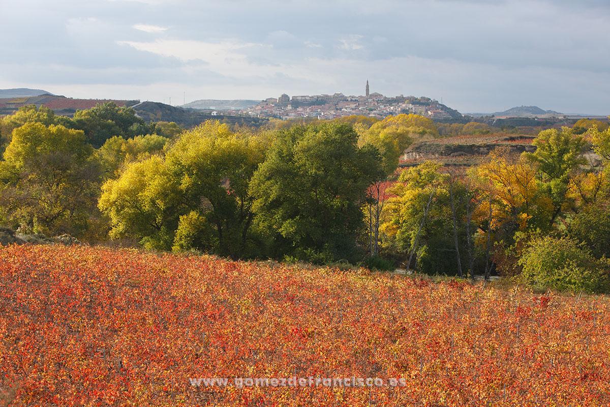Briones (La Rioja) - La Rioja - J L Gómez de Francisco. Fotografía de paisaje de La Rioja - Landscapes from La Rioja