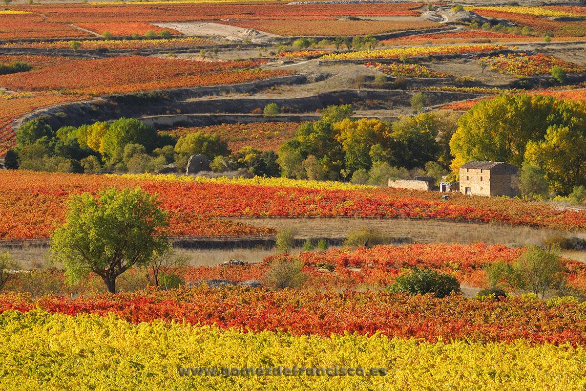 San Asensio (La Rioja) - La Rioja - J L Gómez de Francisco. Fotografía de paisaje de La Rioja - Landscapes from La Rioja