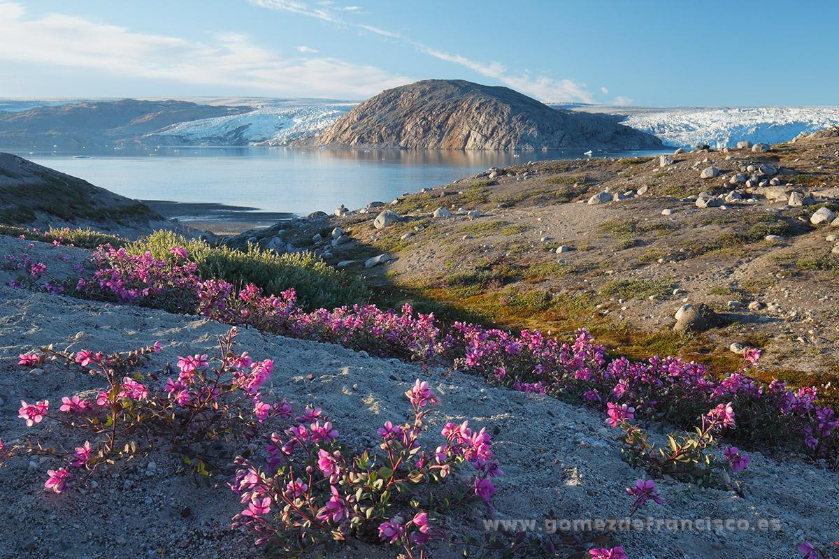 Qalerallit, Groenlandia - Groenlandia - J L Gómez de Francisco. Fotografía de paisaje de Groenlandia - Landscapes from Greenland
