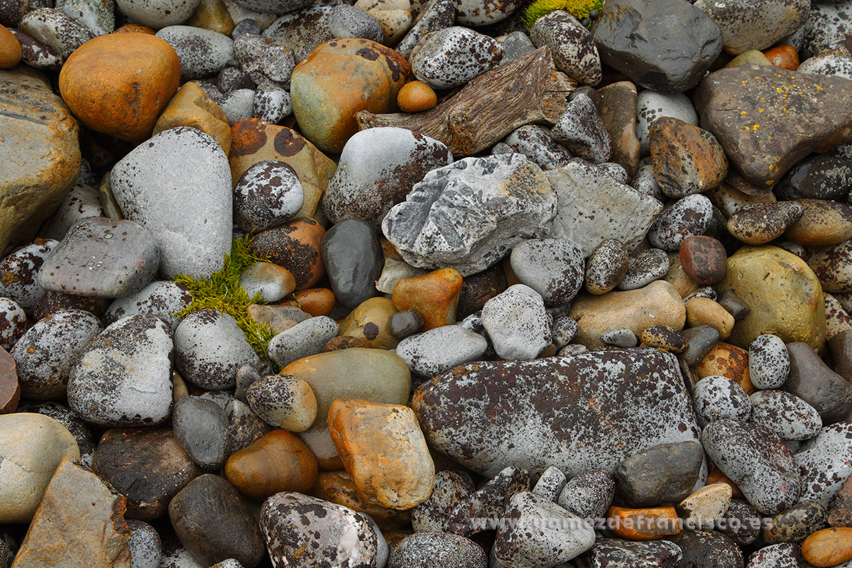 Detalle de una playa de piedras. Svalbard - Atención al detalle - J L Gómez de Francisco. Fotografía de detalles de la naturaleza - Photography of patterns in nature