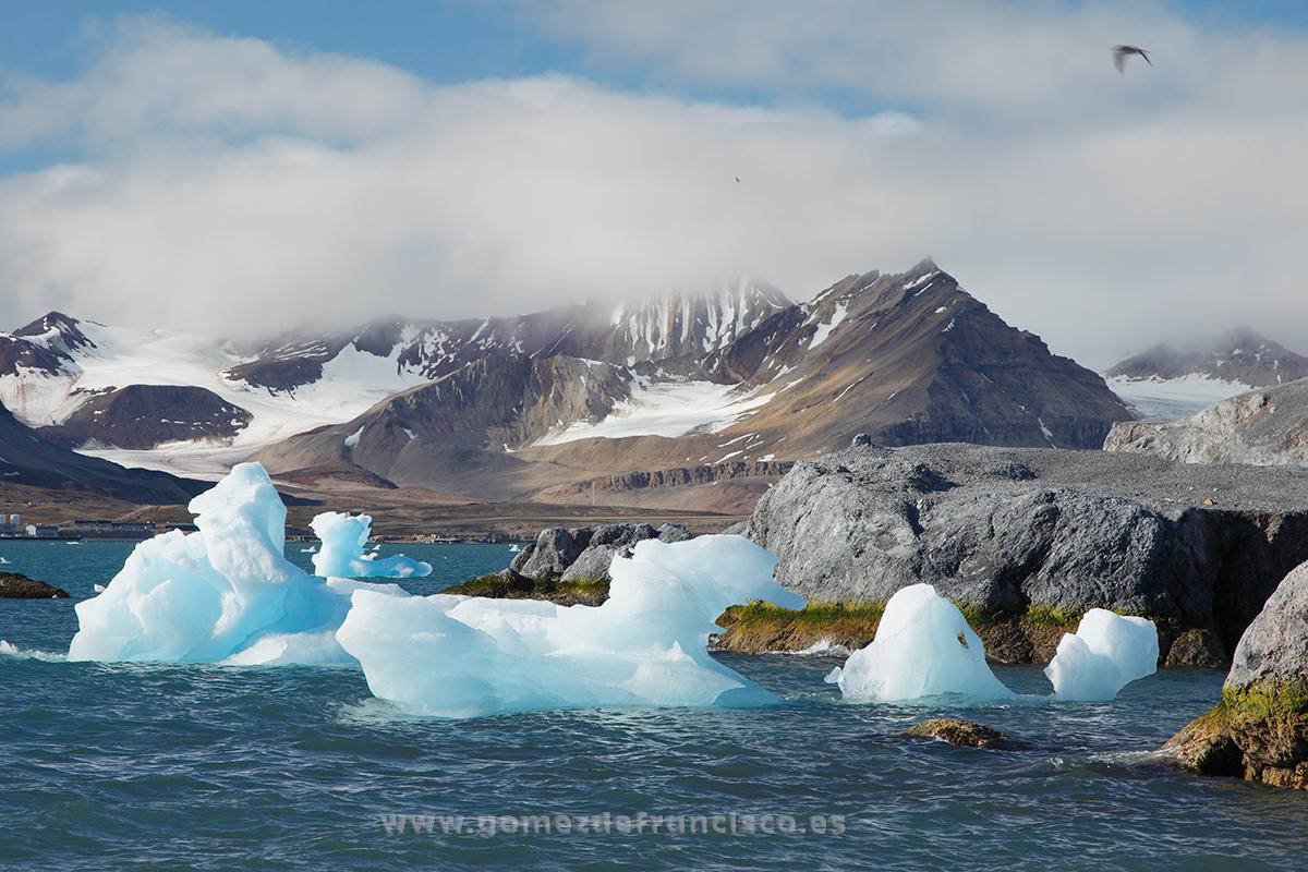 Isla de Blomstrandhalvoya, Kongsfjorden, Svalbard -  Blomstrandhalvoya island, Kongsfjorden, Svalbard - J L Gómez de Francisco. Landscape photographs of Svalbard