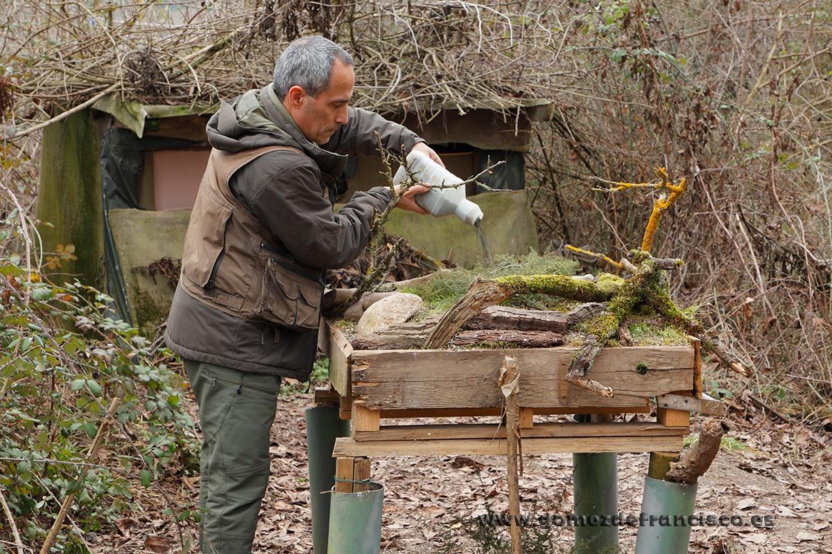 Preparando comedero de invierno. España. - Making of - J L Gómez de Francisco. Fotografía de making of - Making of