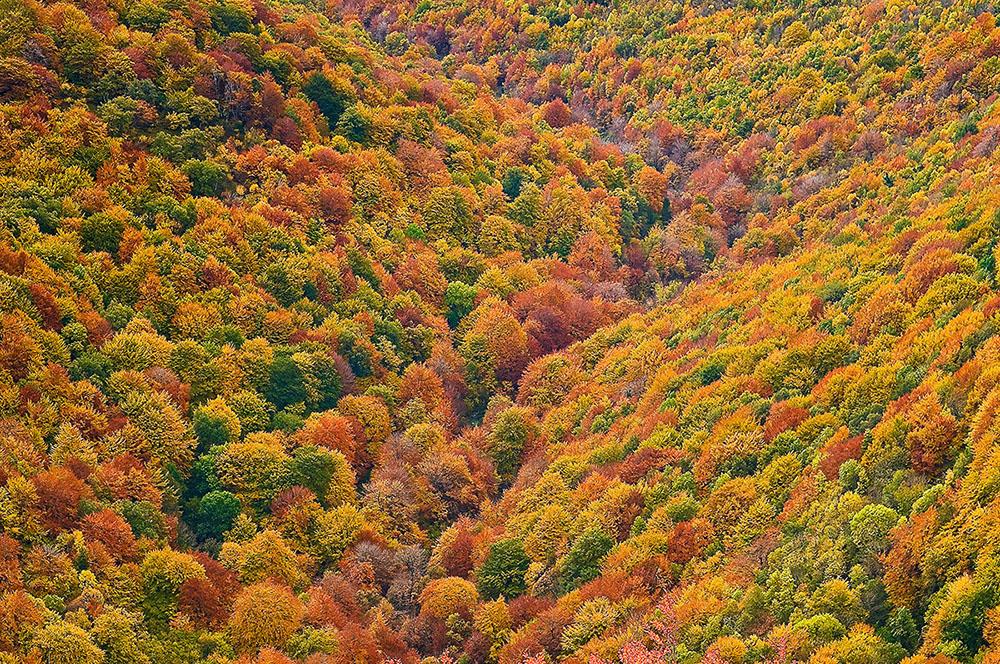 Viajar por España - juanjo sierra, nature & travel photographer