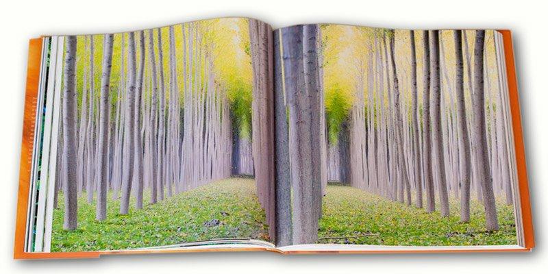 foto de Koldo Badillo en el libro - Libro de PortfolioNatural  NATURA - Libro de Portfolio Natural NATURA