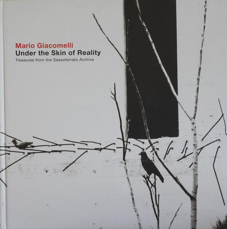 Mario Giacomello- Under the skin of Reality.jpg - fotógrafos - Visión Natural, fotografías de Koldo Badillo