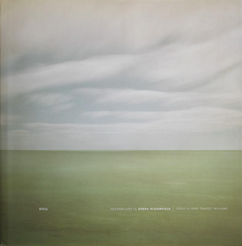 Debra Bloomfield-Oceanscapes.jpg - fotógrafos - Visión Natural, fotografías de Koldo Badillo