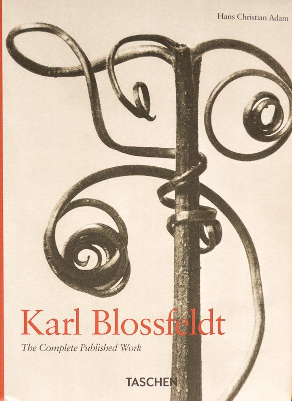 Karl Blossfeldt-The complete Published Work.jpg - fotógrafos - Visión Natural, fotografías de Koldo Badillo