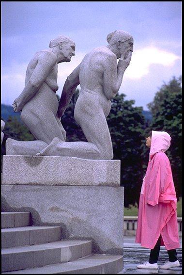 reportaje Escandinavia - report Scandinavia  - VISIÓN NATURAL Scandinavia