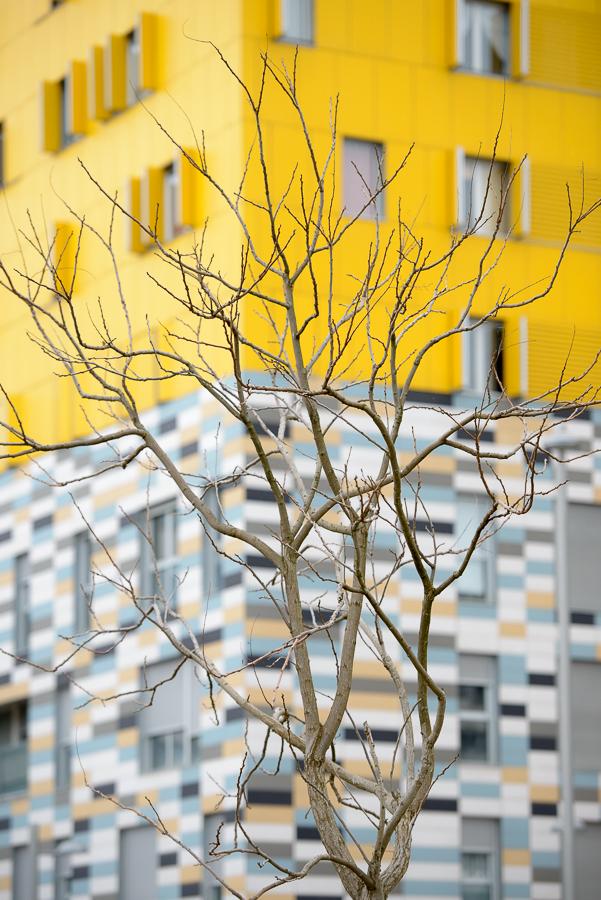 Entre Líneas - entre líneas - Visión Natural. Fotografías de Koldo Badillo