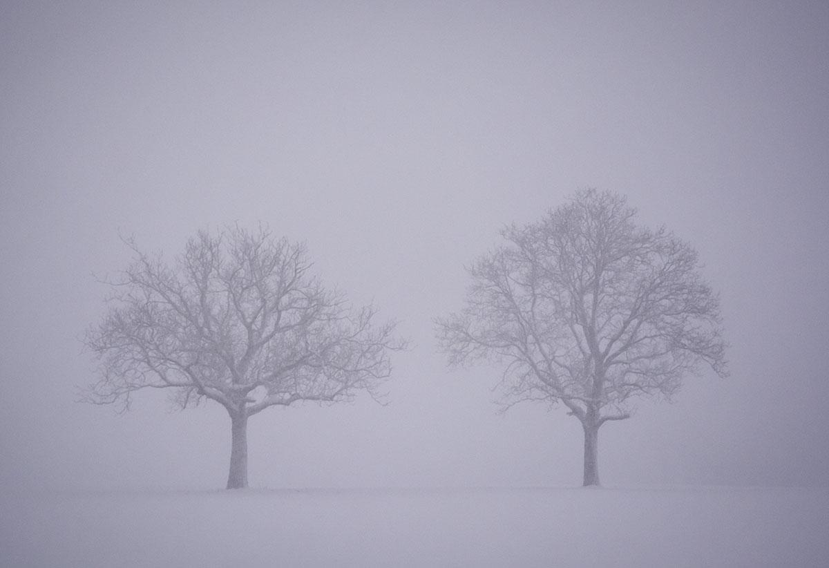 Juntos - Archivo - Iñaki Larrea, Fotografía de naturaleza y montaña