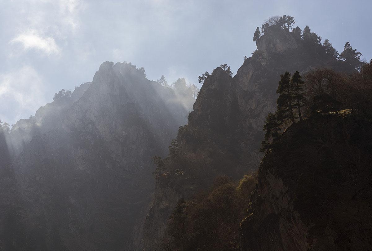 La vida al borde - Archivo - Iñaki Larrea, Fotografía de naturaleza y montaña