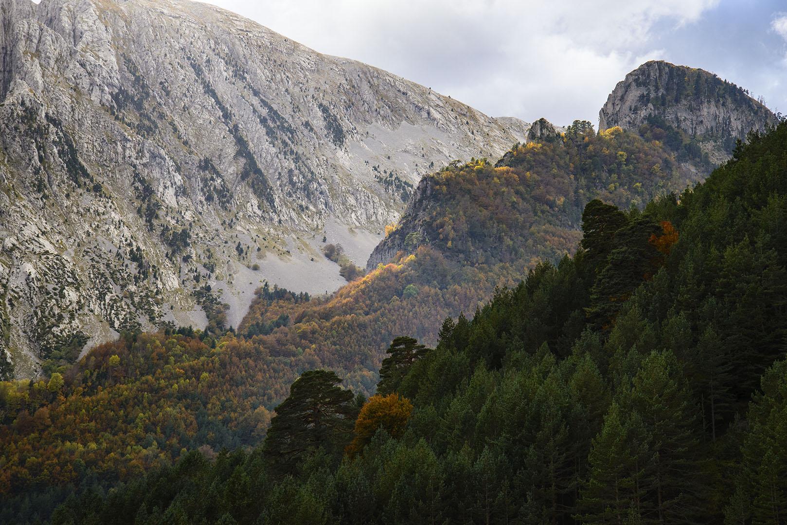 Capas de vida, Pirineos. - Grandes espacios - Fotografia Larrea. Paisajes y grandes espacios
