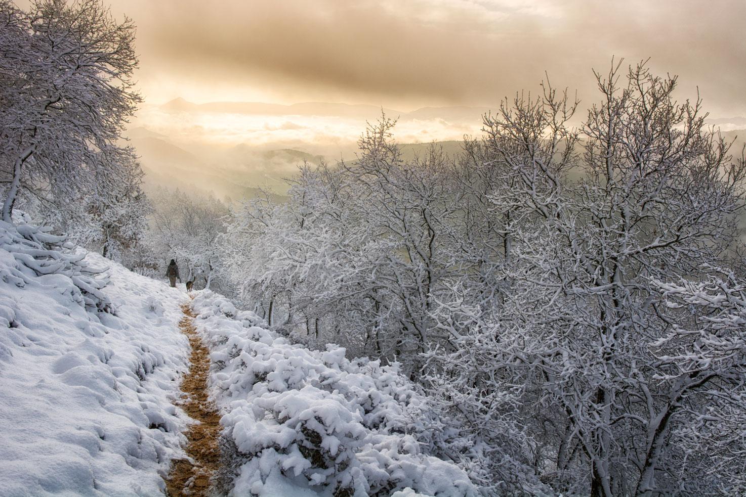 La senda - Deportes y aventuras - Inaki Larrea, Nature and mountains Photography