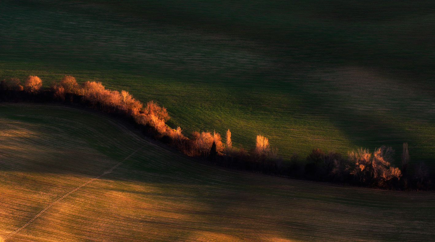 Campos separados - Archivo - Iñaki Larrea, Fotografía de naturaleza y montaña