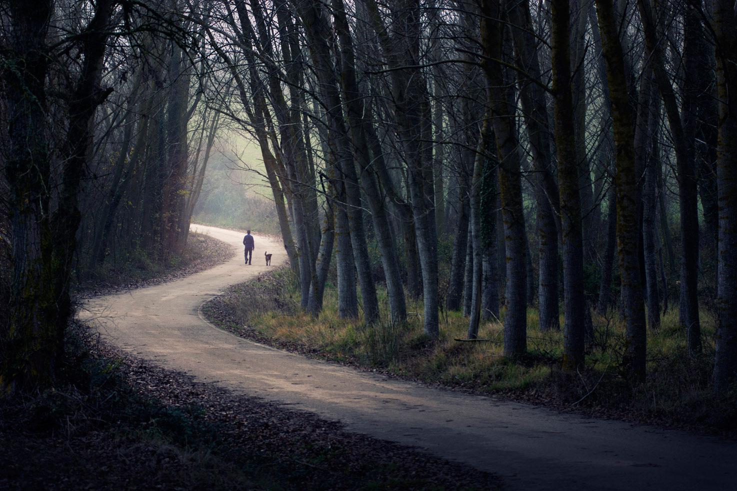 Sigue tu camino - Archivo - Iñaki Larrea, Fotografía de naturaleza y montaña