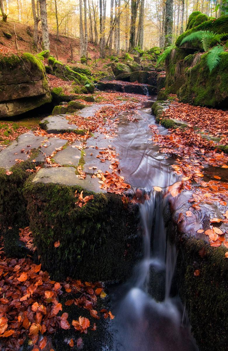 Fluir otoñal - Archivo - Iñaki Larrea, Fotografía de naturaleza y montaña
