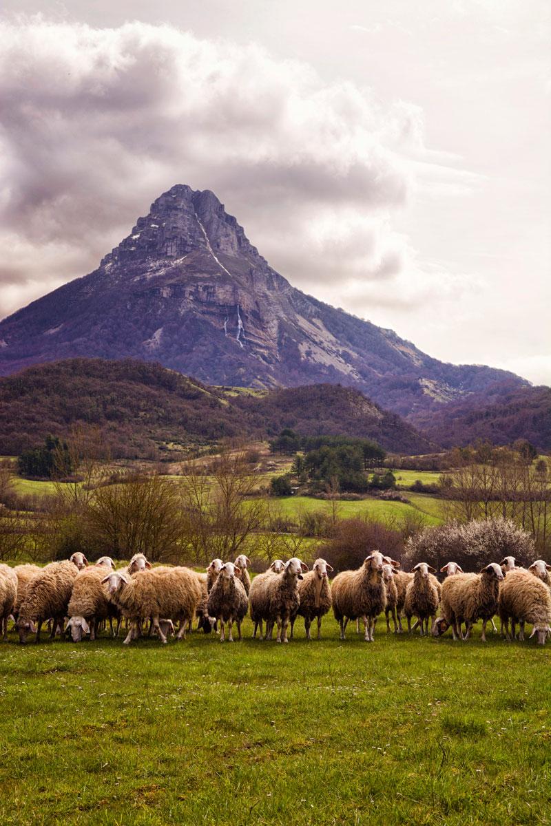 Beriain - Archivo - Iñaki Larrea, Fotografía de naturaleza y montaña