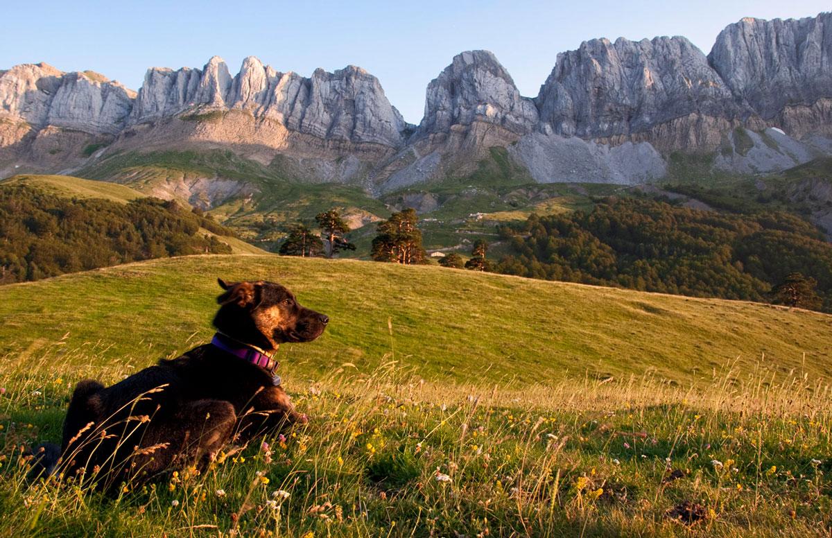 Observando el atardecer - Archivo - Iñaki Larrea, Fotografía de naturaleza y montaña