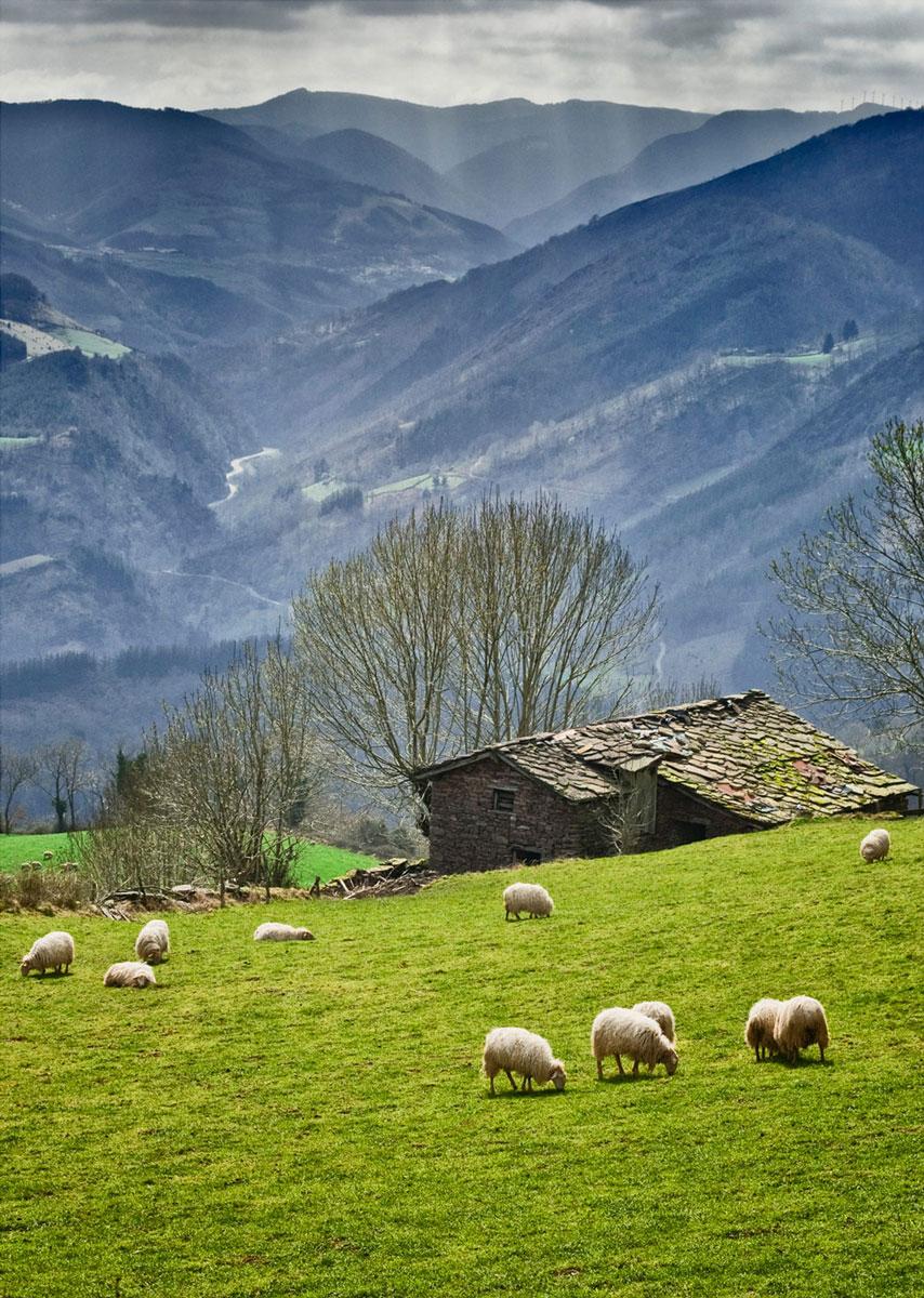 Laderas del Mendaur - Archivo - Iñaki Larrea, Fotografía de naturaleza y montaña
