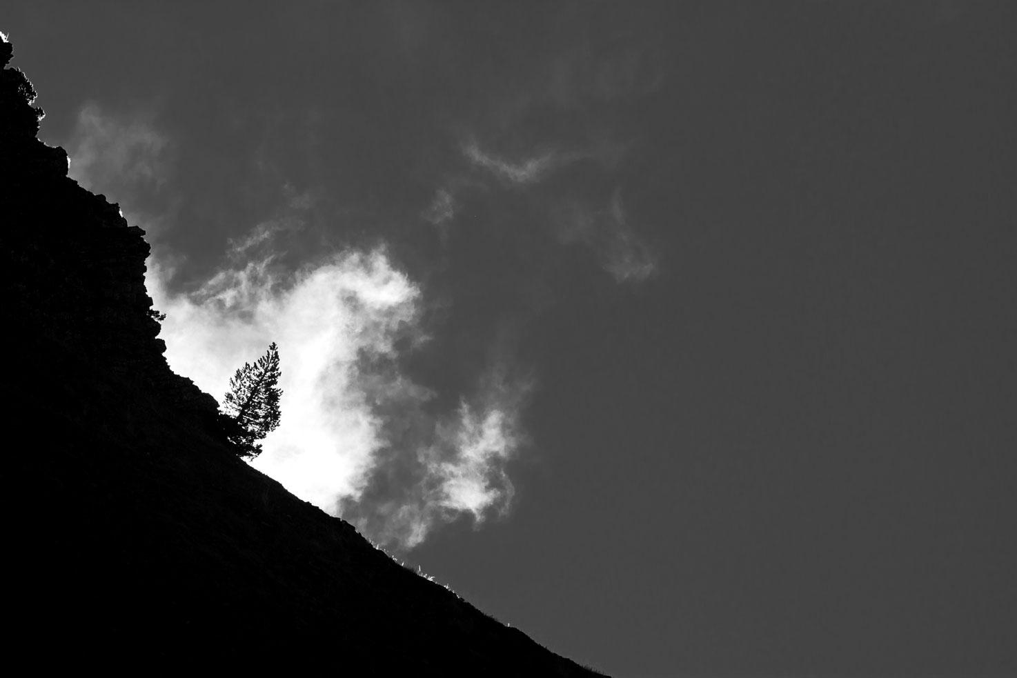 El gran luchador, Larra. - Archivo - Iñaki Larrea, Fotografía de naturaleza y montaña