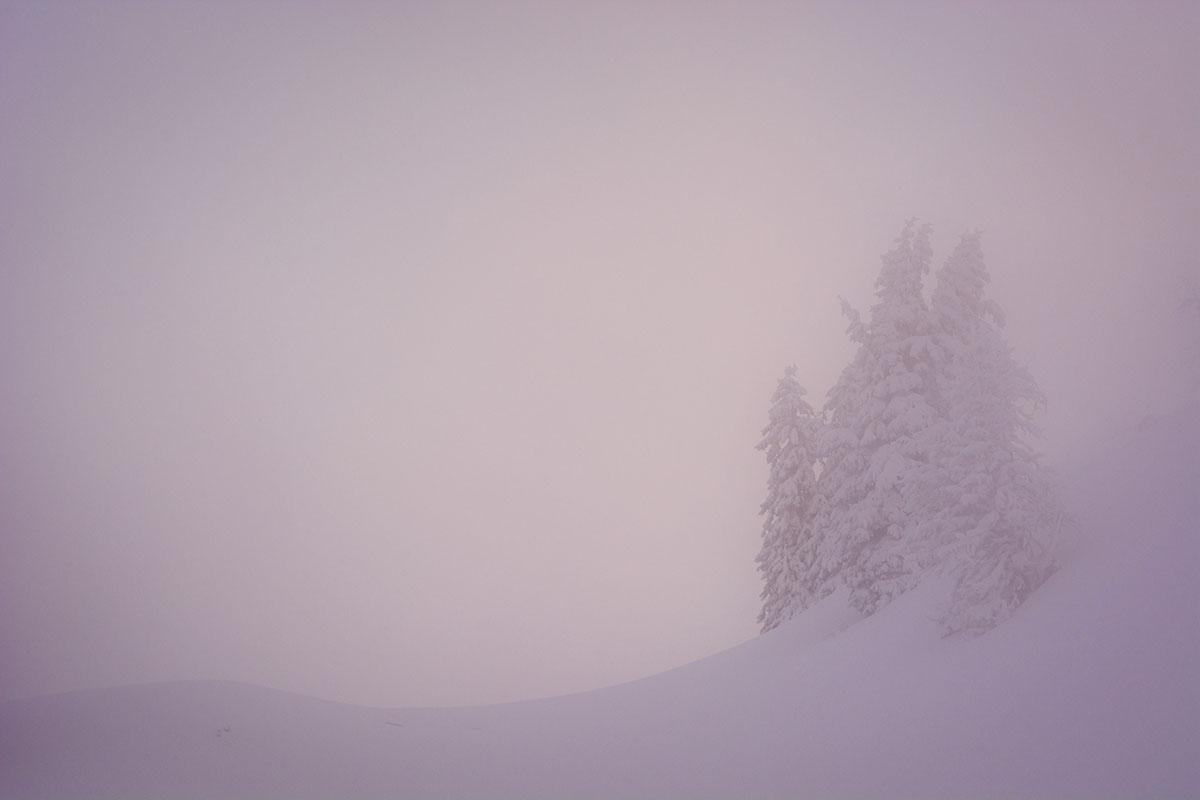 Intmidad, Alpes. - Archivo - Iñaki Larrea, Fotografía de naturaleza y montaña
