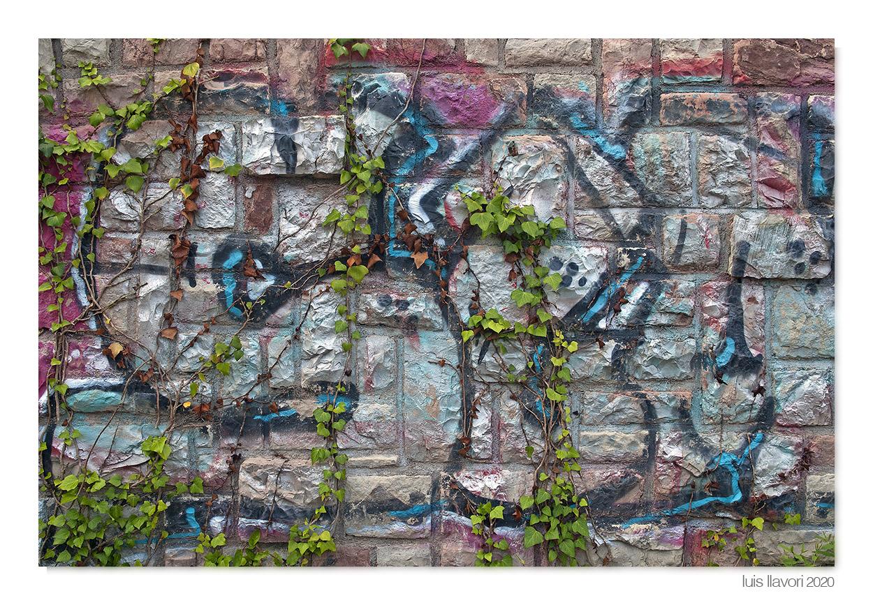 01 - Naturaleza urbana - Luis Llavori , Fotografía