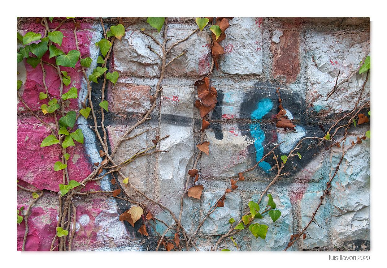 07 - Naturaleza urbana - Luis Llavori , Fotografía