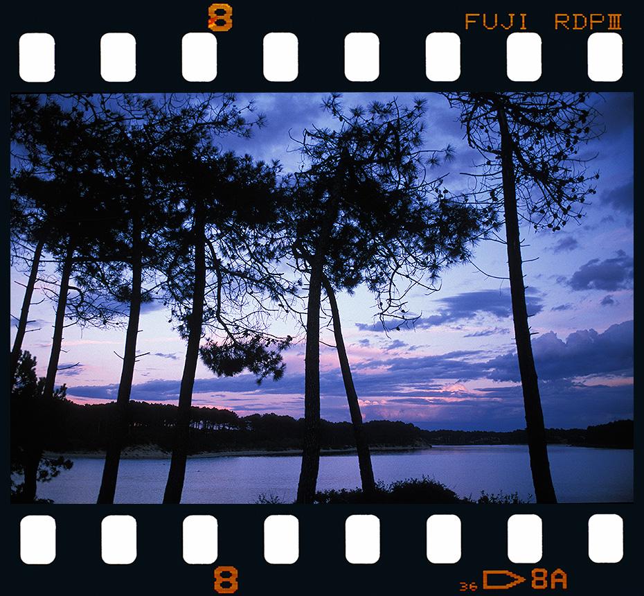 Lac Marin - Vieux Boucau - Francia. - Diapositivas 2 - Luis Llavori , Fotografía