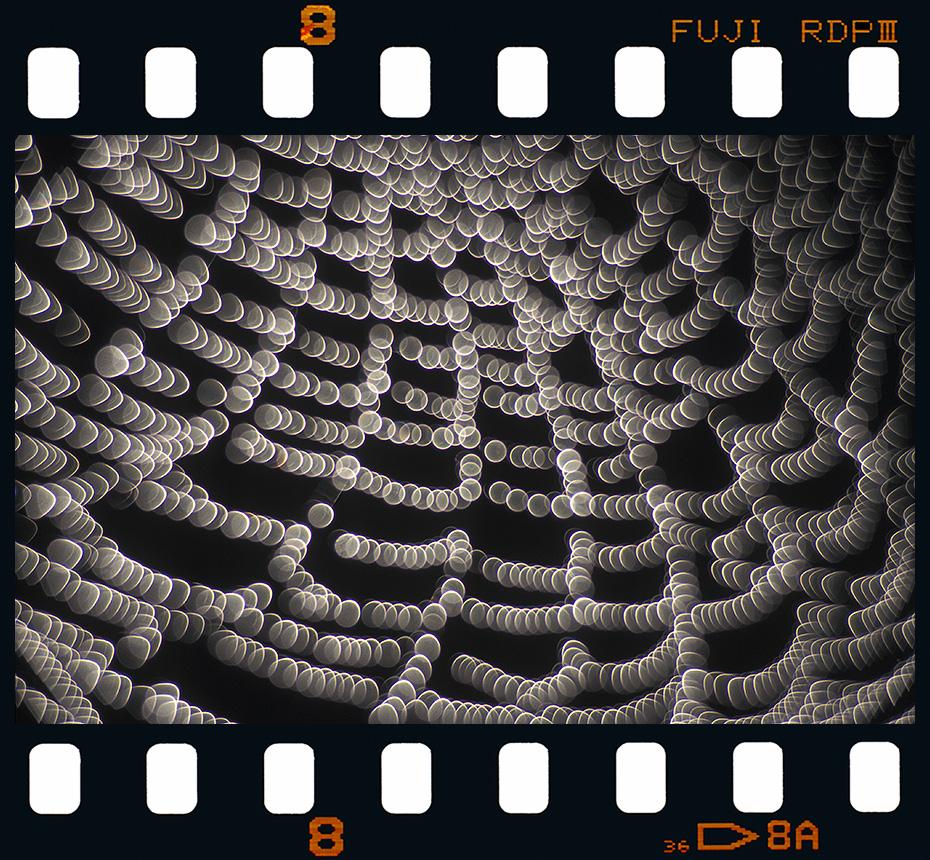 Tela de Araña - Diapositivas 2 - Luis Llavori , Fotografía