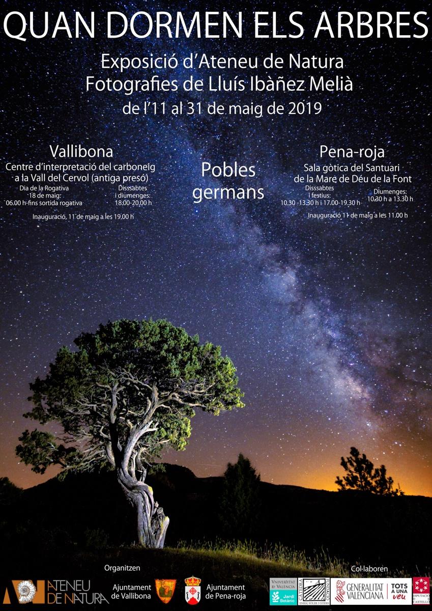 Vallibona - Pena Roja - Quan dormen els Arbres - LLUIS IBAÑEZ MELIA, Geografies als Ports Maestrat